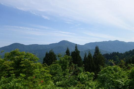 gobyuu19620032.jpg