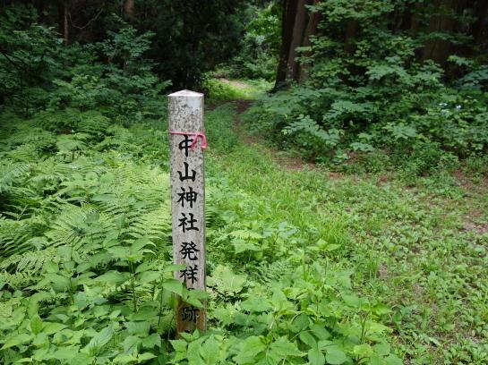 saruhira196150009.jpg