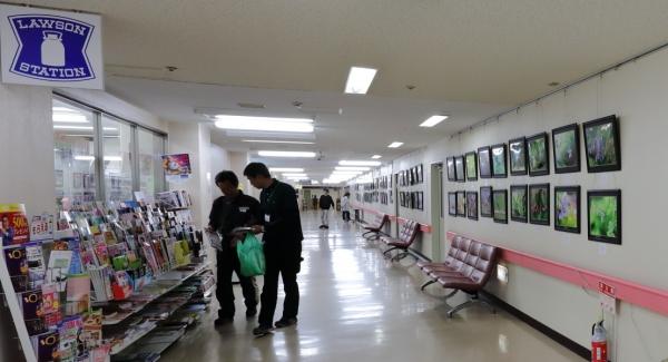 信州大学医学部附属病院写真展示