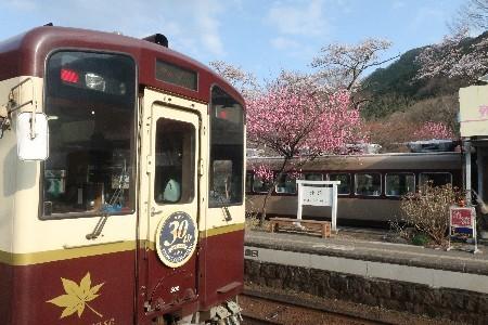 わたらせ渓谷鐡道20190407-12