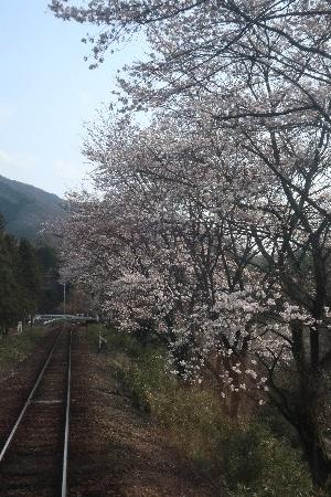 わたらせ渓谷鐡道20190407-09