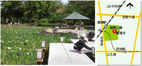 鶴舞公園菖蒲池マップ