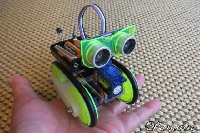 MS_Robot0.jpg