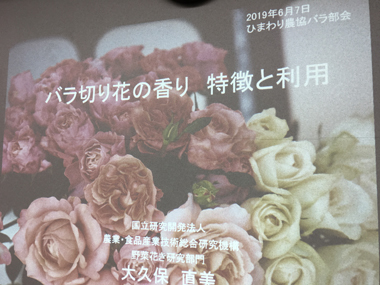 JAひまわりバラ部会 日本一 アロマ 豊川 御津 花屋 花夢