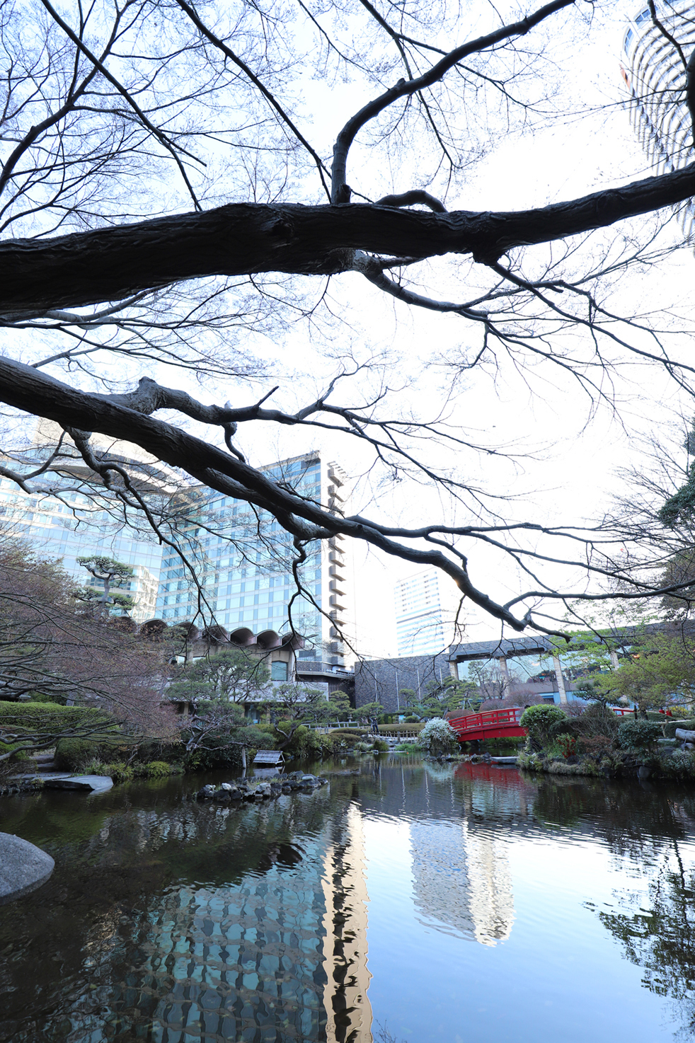 shuku_IMG_3586.jpg