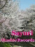 アカシックレコードリーダーさゆり 桜咲く春ですね アカシックレコードリーディング