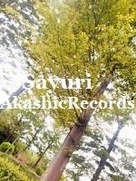 アカシックレコードリーダーさゆり 新緑 アカシックレコードリーディング