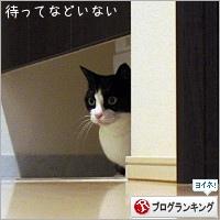 dai20190514_banner.jpg