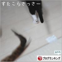 dai20190517_banner.jpg