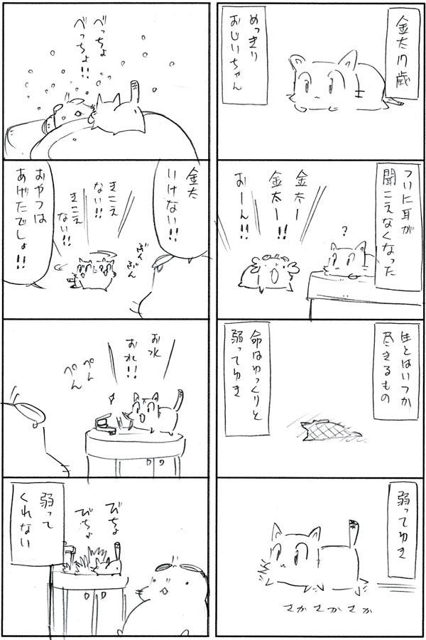 まんぷく金太