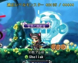Maple_190611_102605.jpg