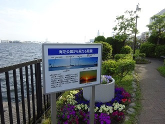 umishibaura9.jpg