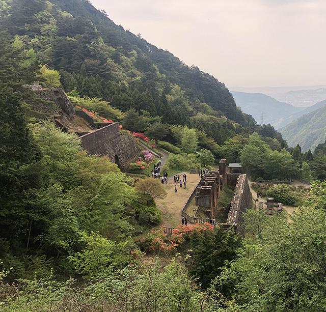 tokushima09.jpg