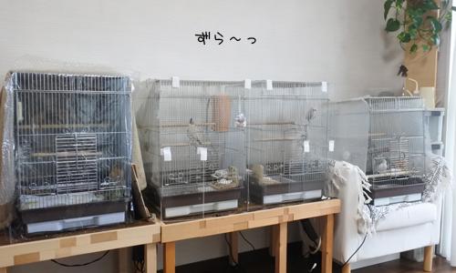 連休中_6
