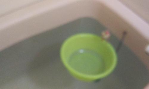 ピーチと入浴_1