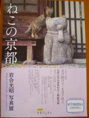 ねこの京都展