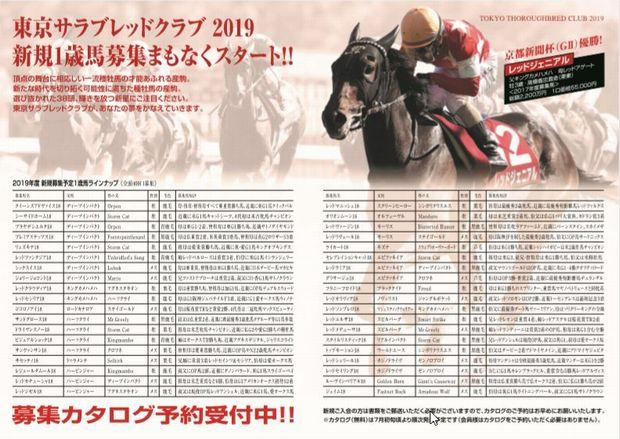 東京TC2019年募集馬①