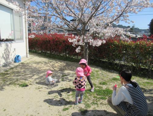 ななの樹4月①