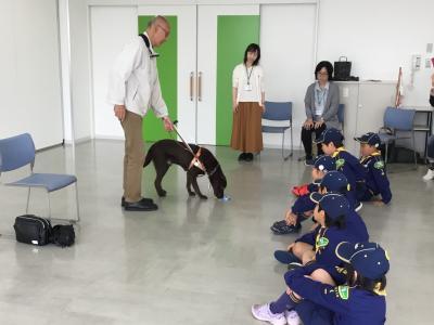 ボーイスカウト盲導犬1