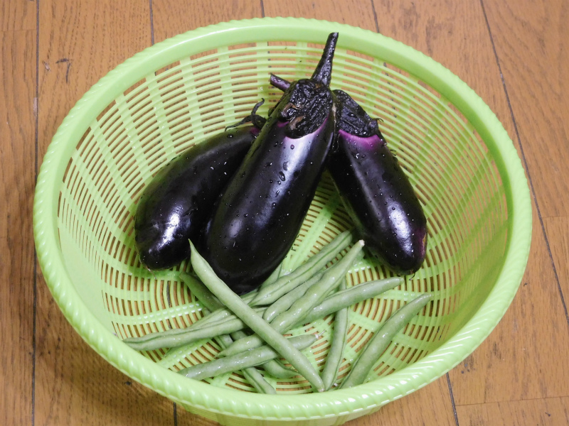 ss-茄子とインゲン