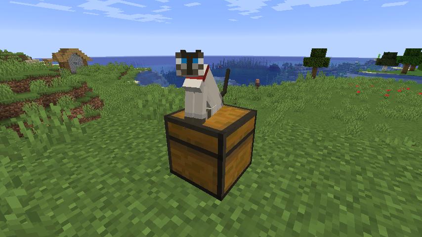 update_mob_cat_4.png