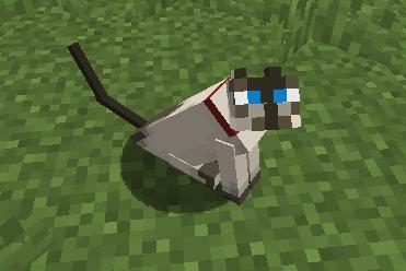 update_mob_cat_7.png