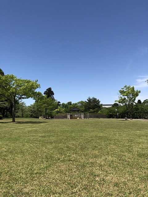 鶴岡公園 2019春1