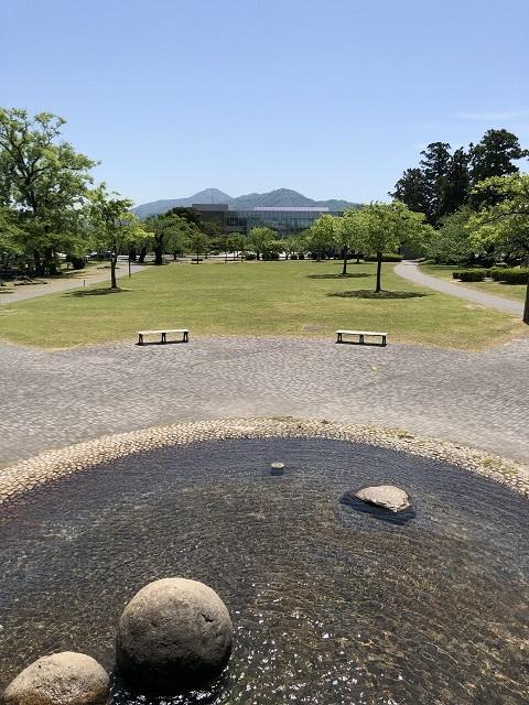 鶴岡公園 2019春2
