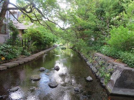 柿田川30