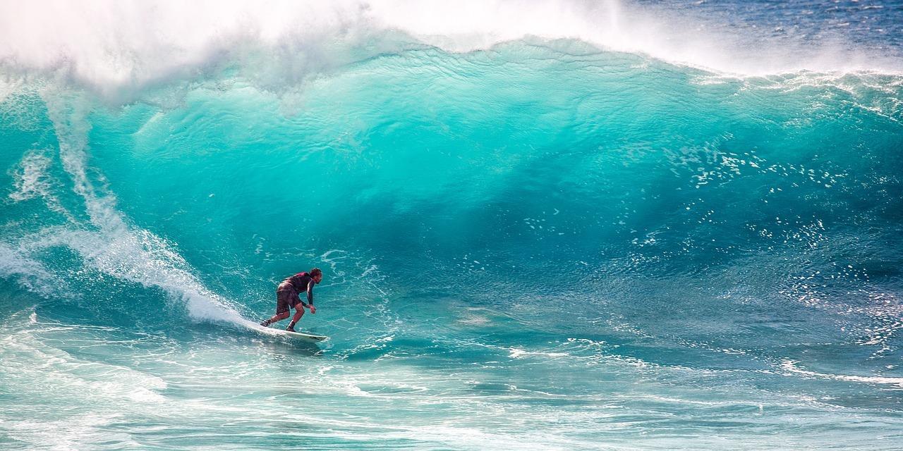 surfing-2192675_1280.jpg