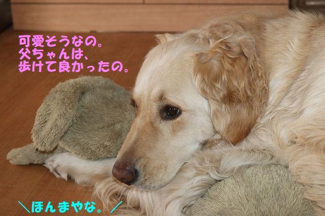 IMG_6450.jpg