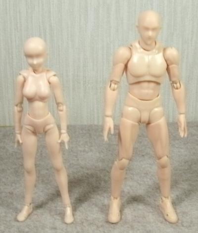フィギュアーツボディ男女 (1)