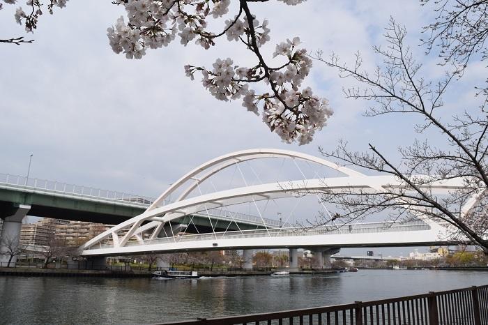 DSC_0117 (1)橋