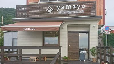yamayo flea1 (1)