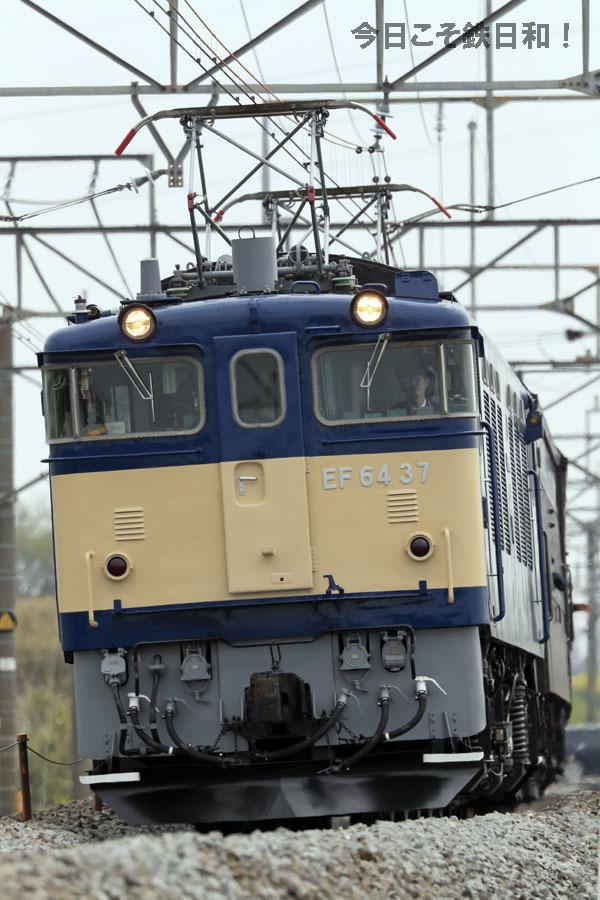 _MG10626.jpg