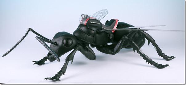 ant01