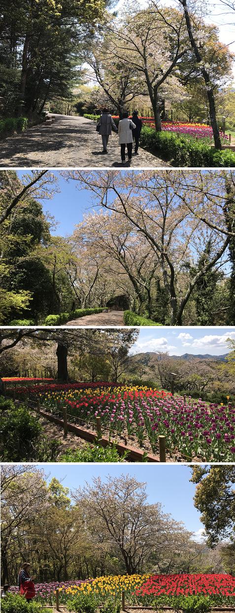 20190412公渕森林公園