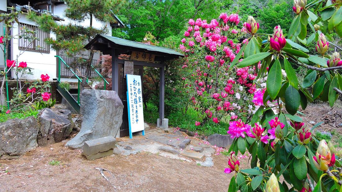20190507赤城寺 (79)