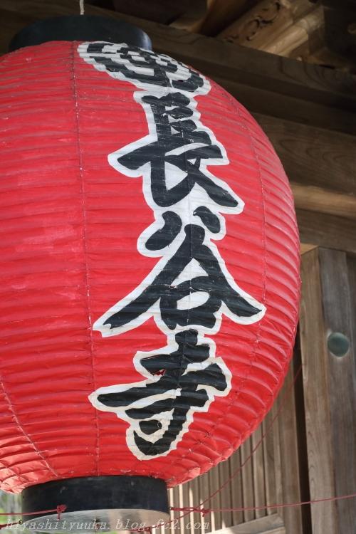 5Z2A5681 長谷寺SN