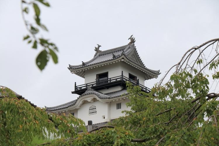 掛川0265-SSSS