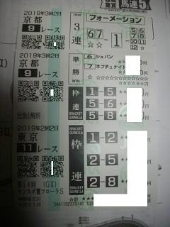 IMGP4698.jpg
