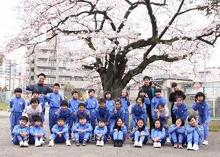 20190410桜_OK