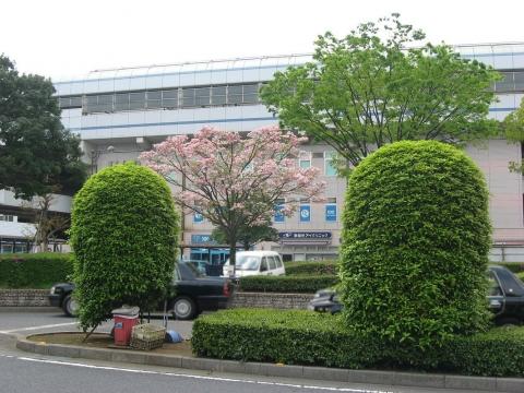 JR武蔵野線南越谷駅(その2)