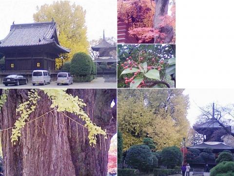 bannaji_koyo201211_02