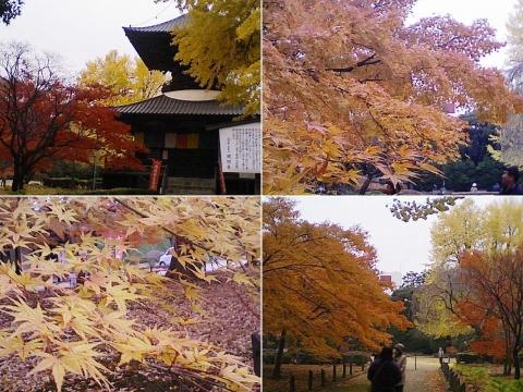 bannaji_koyo201211_04