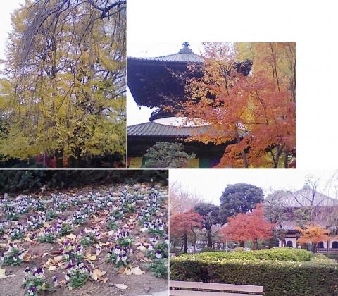 bannaji_koyo201211_05