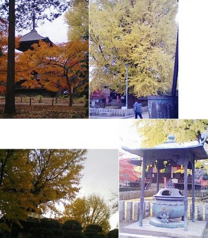 bannaji_koyo201211_09