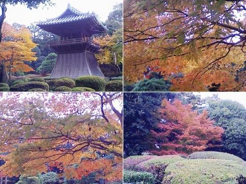bannaji_koyo201211_10