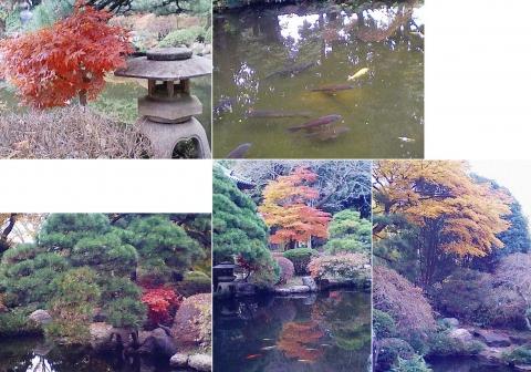 bannaji_koyo201211_11