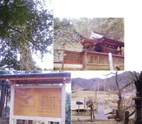 kabasaki_hachiman201212_2
